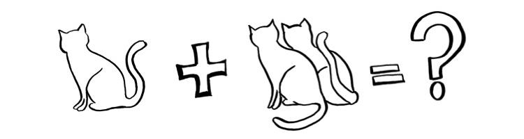 keyword planner kat plus katten